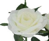 로즈 (XF30034)의 인공 플라스틱 또는 실크 꽃 단 하나 줄기