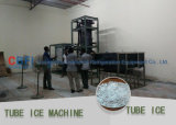 Facile d'installer la machine de glace de tube pour l'Afrique 10000 Kg/Day