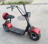 EWG und RoHS 2017 populärer 2 grosse Räder Harley E Seev Citycoco Roller mit Cer