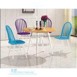 다방 (HW-3031C)를 위한 현대 나무로 되는 식사 의자