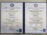 Acessórios de processamento de carimbo automotrizes, automóvel que carimba as peças (HS-ST-047)
