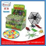 طبيعة عالم بلاستيكيّة حيوانيّ سكّر نبات لعبة