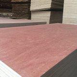 madera contrachapada de la cara de Bintangor del gradiente de 4.5m m BB/CC para la decoración