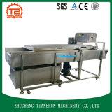 Batatas SS304/máquina de lavar do rolo escova de Orang/líquido de limpeza vegetal