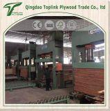 工場販売は直接構築のための上塗を施してある合板の閉める合板を撮影する