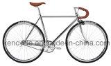 Kencycle Verlegenheits-erstklassiger örtlich festgelegter Gang-einzelnes Geschwindigkeits-Fahrrad Sy-Fx70022