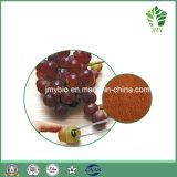 Heißer verkaufen100% natürlicher Trauben-Startwert- für Zufallsgeneratorauszug 95% Proanthocyanidins UV; Polyphenole 95% UV