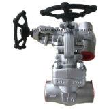 800lb a modifié le robinet d'arrêt sphérique de l'extrémité d'amorçage de l'acier inoxydable F304 TNP