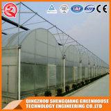 Landwirtschafts-doppelte Schicht-Plastikgewächshaus