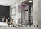 セメントデザイン床600X600mm (BMC01)のための無作法な磁器の床タイル