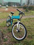 36V 250W E Fork Suspensão Motorizada bicicleta de montanha elétrica com bateria escondida