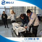 Russland-Markt-Verteiler wünschte q-Schalter Nd YAG Laser-Tätowierung-Abbau