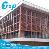 Heißer Verkaufs-Gebäude-Schoneraluminiumsun-Luftschlitz mit PVDF Beschichtung