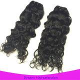 Cheveux humains de Vierge de Remy Jackson de couleur normale malaisienne normale d'onde