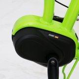 مصغّرة كهربائيّة سمين يطوي درّاجة مع [20ينش] إطار العجلة تعليق