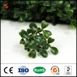 China-Lieferant PET synthetische grüne Plastikwand für Hotel-Gebrauch
