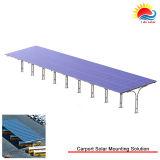 Instalación solar rápida del montaje del picovoltio del montaje (GD1039)