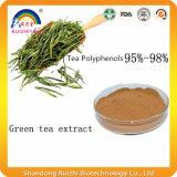 L'extrait de thé vert organique pour détruisent le produit de poids
