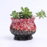 Het leuke Porselein van de Tuin van de Pot van de Bloem van het Konijntje van het Konijn Ceramische Succulente