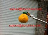 Cesoie di potatura telescopiche Lopper dell'acciaio inossidabile di Ilot o raccoglitrice della frutta