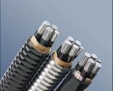 (ZB-ACWU90) 4-Core XLPE a isolé PVC engainé, la chaîne AAAC blindé auto-bloqueur
