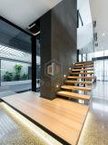Diseño de madera de la escalera/escaleras del acero inoxidable