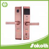 Hardware professionale del portello del metallo di schiocco esterno e grande fornitore placcato interno della Cina della maniglia di portello