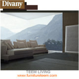 Verter los sofás cómodos vivos de la sala de estar