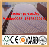 (Meilleur Price) 15mm, 18mm Formwork Plywood/Marine Plywood