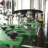Pianta in bottiglia vetro della macchina elaborante della birra