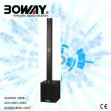Neue populäre Bw604 Column Array Lautsprecher
