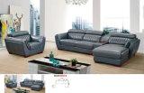 Sofá novo modelo justo do cantão, sofá de couro moderno (660)