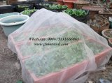 Vegetable Greenhouse Mosquito Net를 위한 HDPE Insect Net
