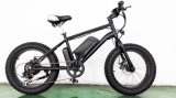 500W FAT Tire 20 Inch Mountain Electric Bicycle