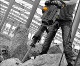 1650W высокое качество Demolition Hammer (LY105-01)