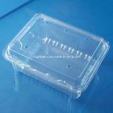 포도를 위한 좋은 품질 음식 급료 애완 동물 플라스틱 과일 포장 상자 500 그램
