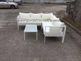 Materiale di alluminio ed insieme moderno del sofà del metallo di apparenza