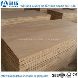 A classe Bintangor/Okoume do AA enfrentou a madeira compensada comercial do núcleo do Poplar para a decoração/mobília