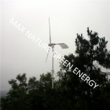 Pequeña turbina de viento para las arenas públicas, jardines, caminos, fábricas