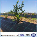 PPの地被植物、PP Weedのマット、PP雑草防除のマット