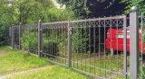 Piccoli cancelli del ferro di disegno moderno per il giardino
