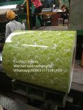 Покрынный цвет Prepainted гальванизированная катушка строительных материалов PPGI катушки PPGI стальная