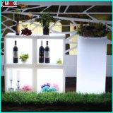 Governo di plastica del vino del Governo del vino della casa del dispositivo di raffreddamento di vino della famiglia