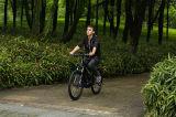 산 모터 먼지 세륨 전기 자전거