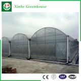 Hot-DIP galvanisierte grüne Plastikhäuser für Gemüse/Blumen