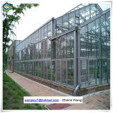 Serre chaude en aluminium d'intérieur en verre de bâti de culture de légumes