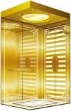 Подъем высотки селитебный домашний в лифт пассажира (RLS-250)