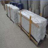 Marmo bianco di Calacatta per le mattonelle, lastre, controsoffitto, parte superiore di vanità