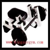 Enrollamiento asentado comercial del brazo del equipo de la gimnasia del equipo de la aptitud