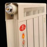 Radiadores centrais do aquecimento do calefator
